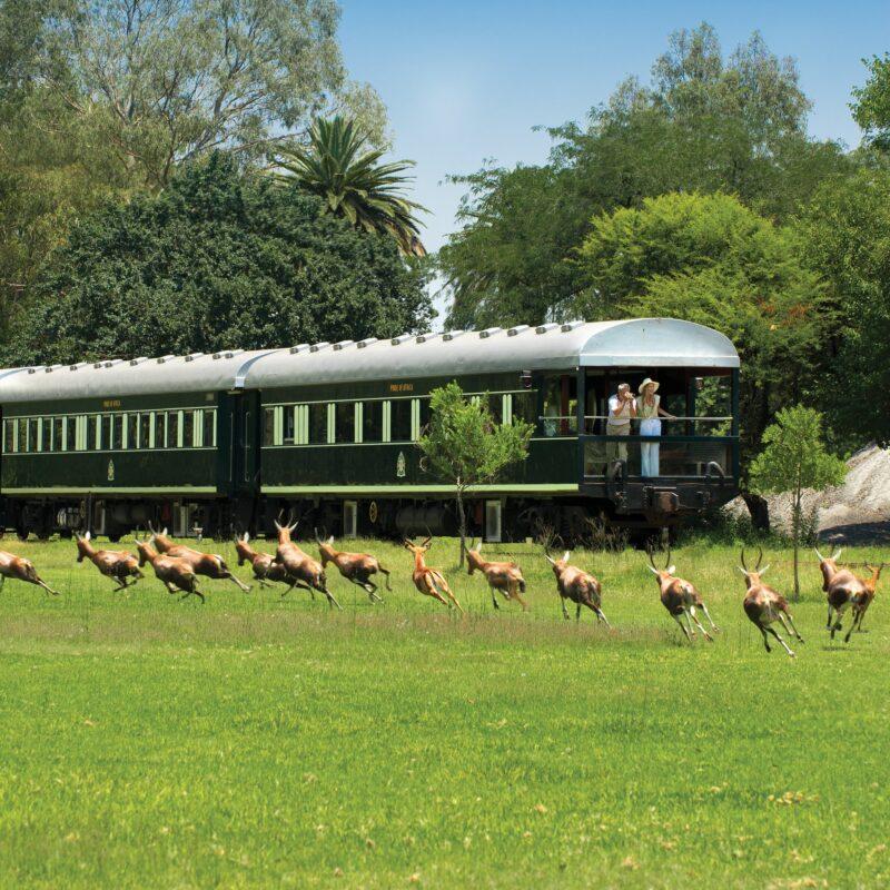 A Rovos Rail trip through South Africa