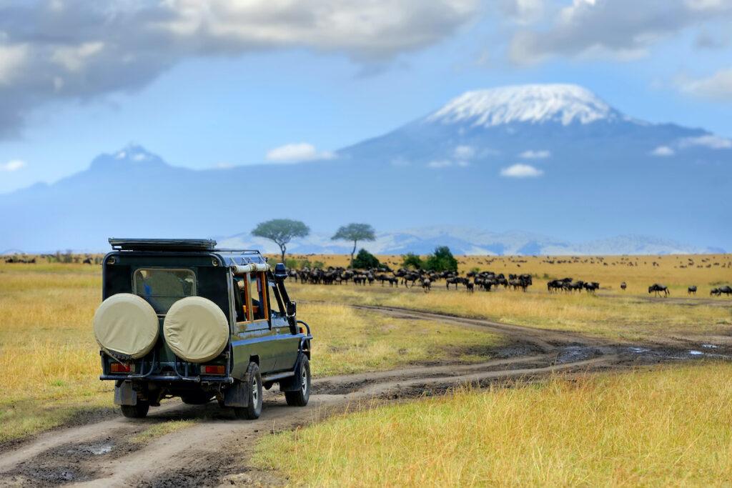 A safari in Masai Mara National Reserve, Kenya.