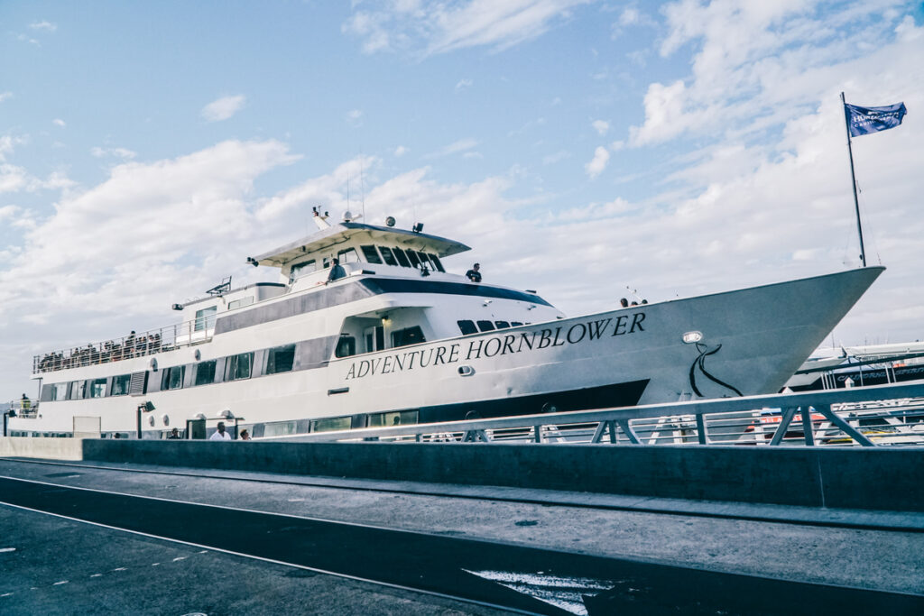 A San Diego Harbor Cruise boat.