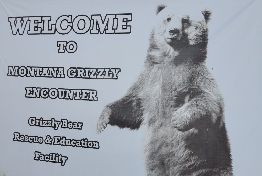 A sign for grizzly bears.