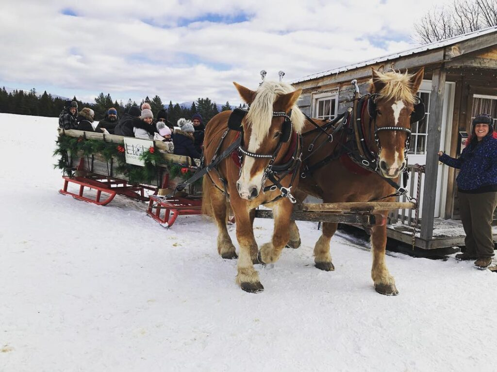 A sleigh ride in Lake Placid.