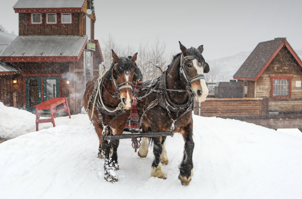 A sleigh ride to Snowed Inn Lodge in Park City.