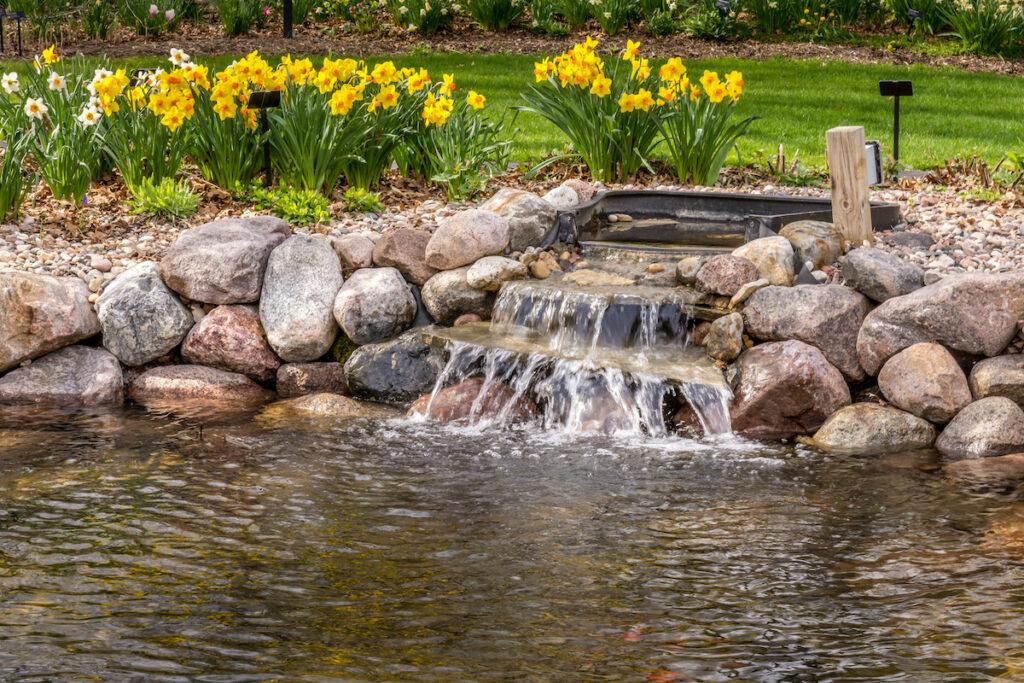 A small pond at a botanical garden.