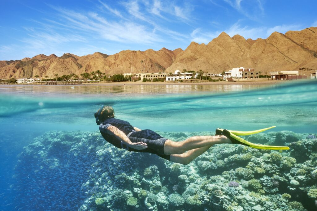 A snorkeler in the Red Sea.