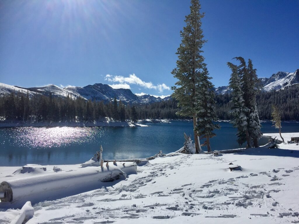 A snowy day at Horsehoe Lake in Mammoth Lakes, California.