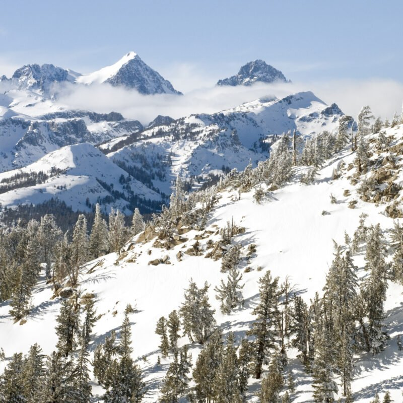 A snowy winter day at Mammoth Lakes, California.