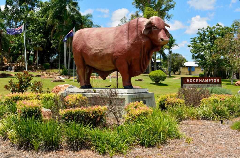 A statue of a bull in Rockhampton, Australia.