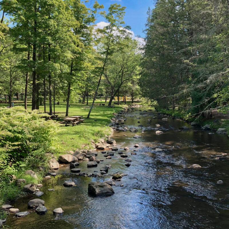 A stream and picnic area in Saratoga Spa State Park.