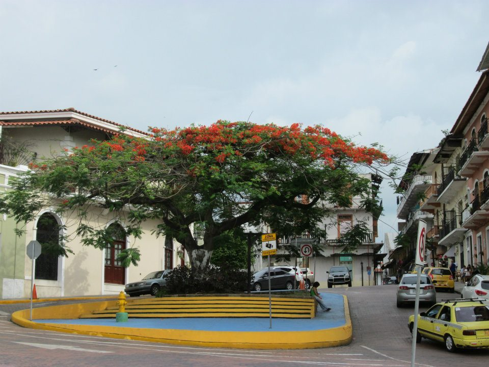 A street in Panama City.