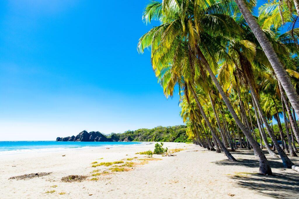 A sunny beach in Costa Rica.