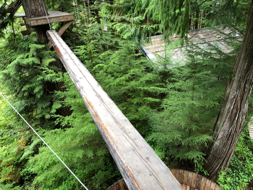 A swinging log bridge on the obstacle course.