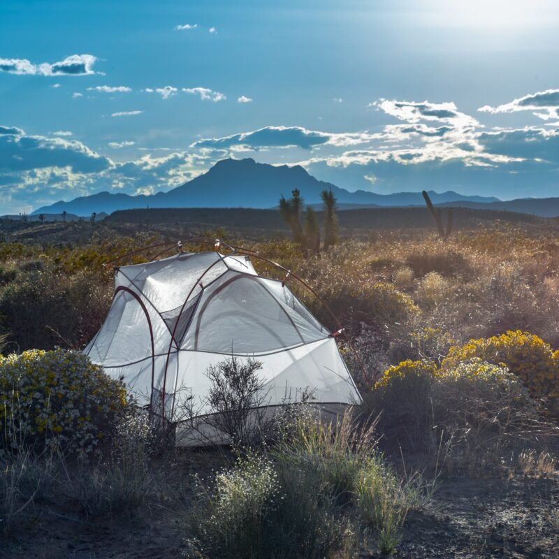 A tent set up in the backcountry of Nevada.