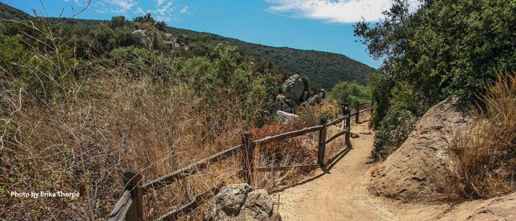 A trail along Los Penasquitos Canyon Preserve