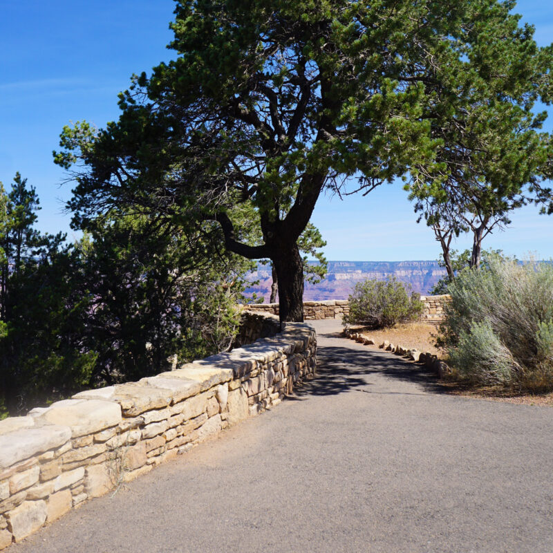 A trail at Grand Canyon National Park.