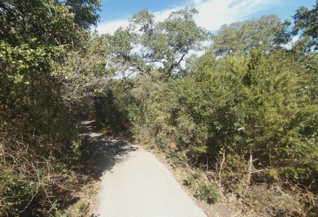 A trail in San Antonio's Friedrich Wilderness Park.