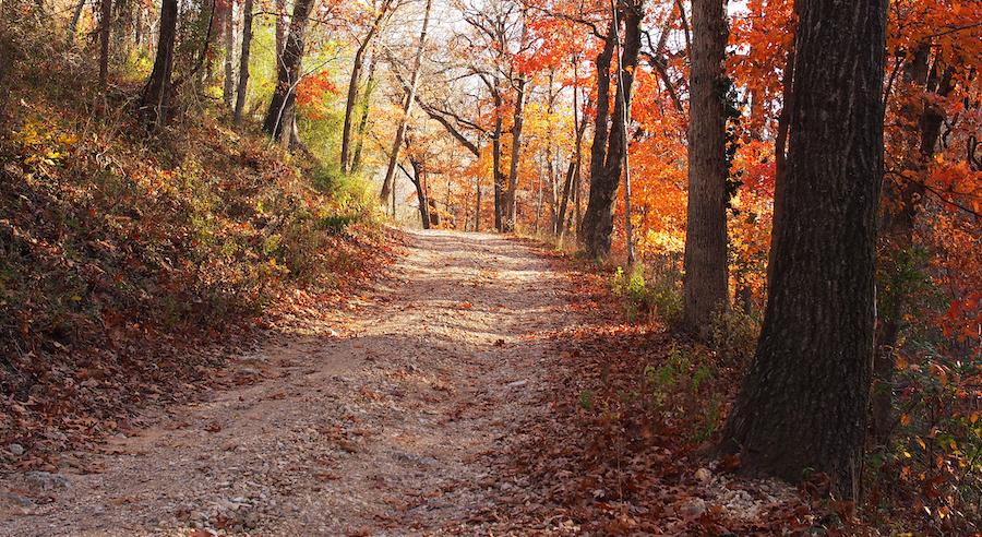 A trail near Eureka Springs during the fall.