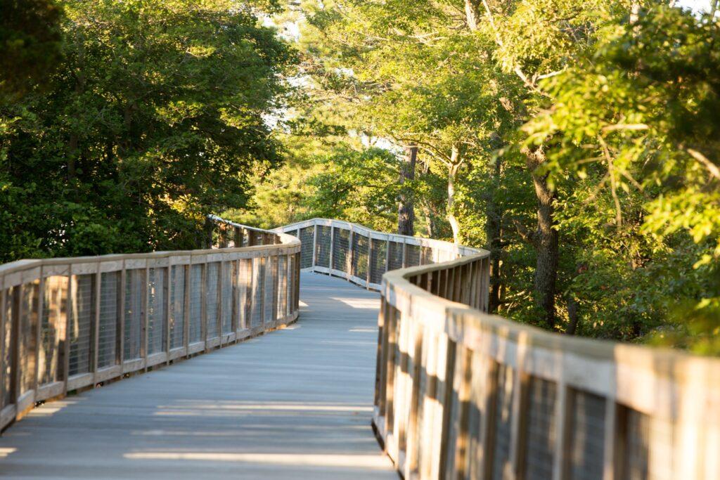 A trail near Gordon's Pond in Delaware.