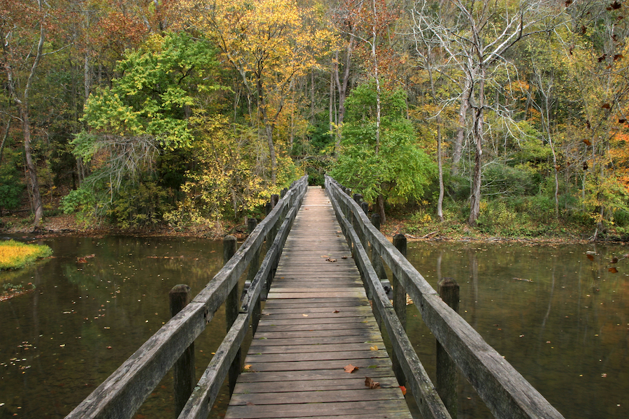 A trail through John Bryan State Park in Ohio.