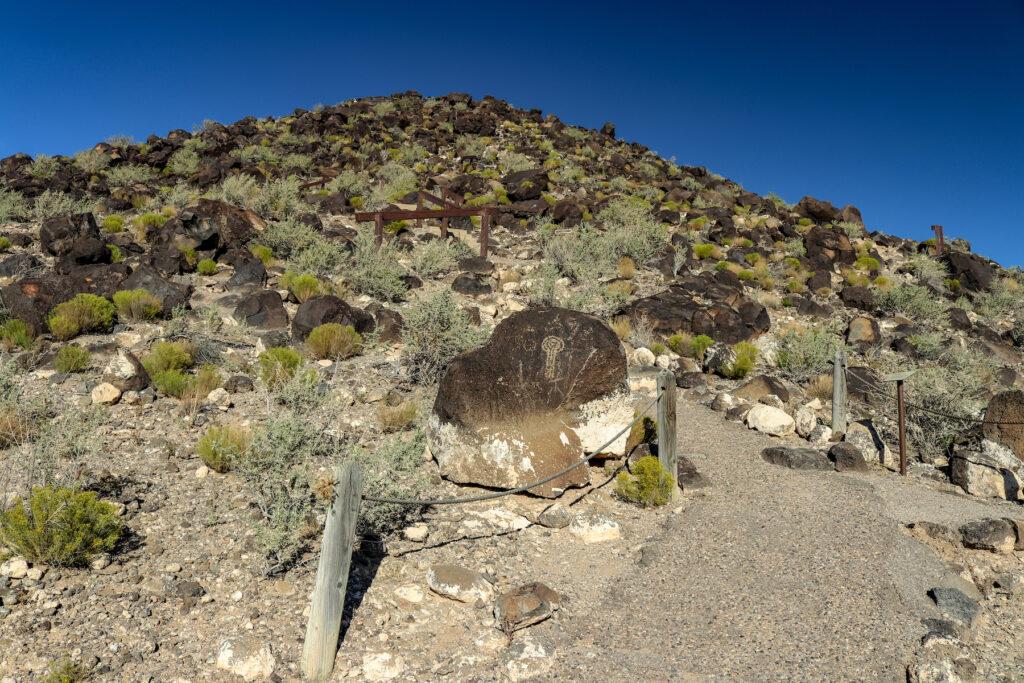 A trail through Petroglyph National Monument.