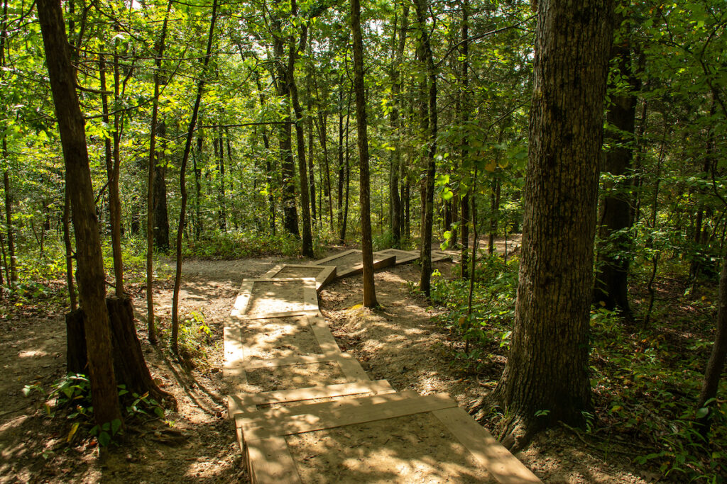 A trail through Shawnee National Forest in Illinois.