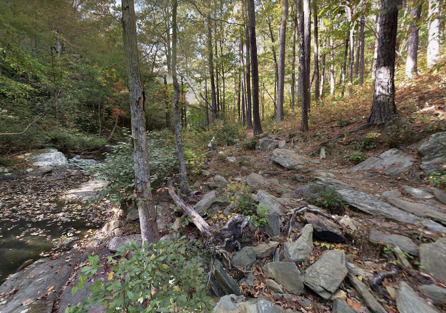 A trail through Talladega National Forest.