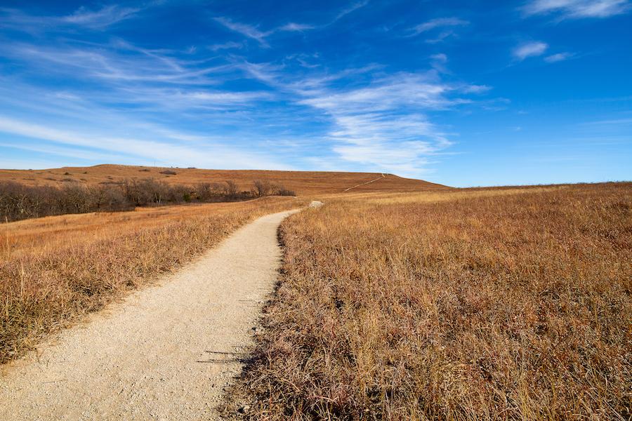 A trail through the Konza Prairie Natural Area in Kansas.
