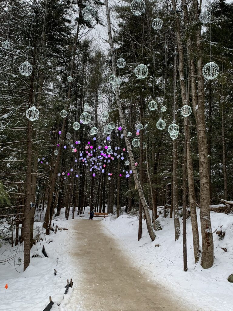 A trail through the woods at the New Hampshire Ice Castles.