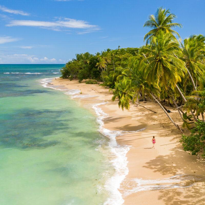 A tropical beach in Costa Rica.