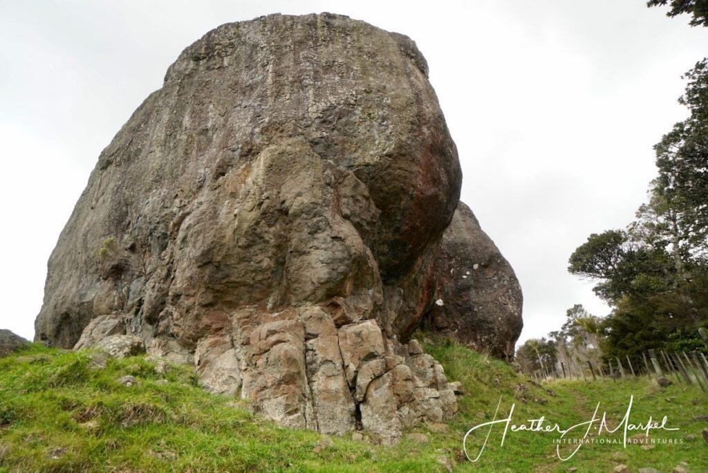 A Wairere boulder up close.