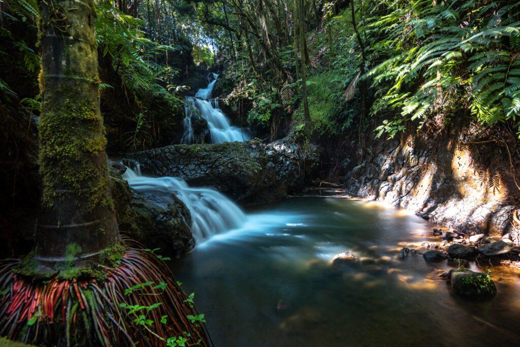 A waterfall in Hilo on Hawaii's Big Island.