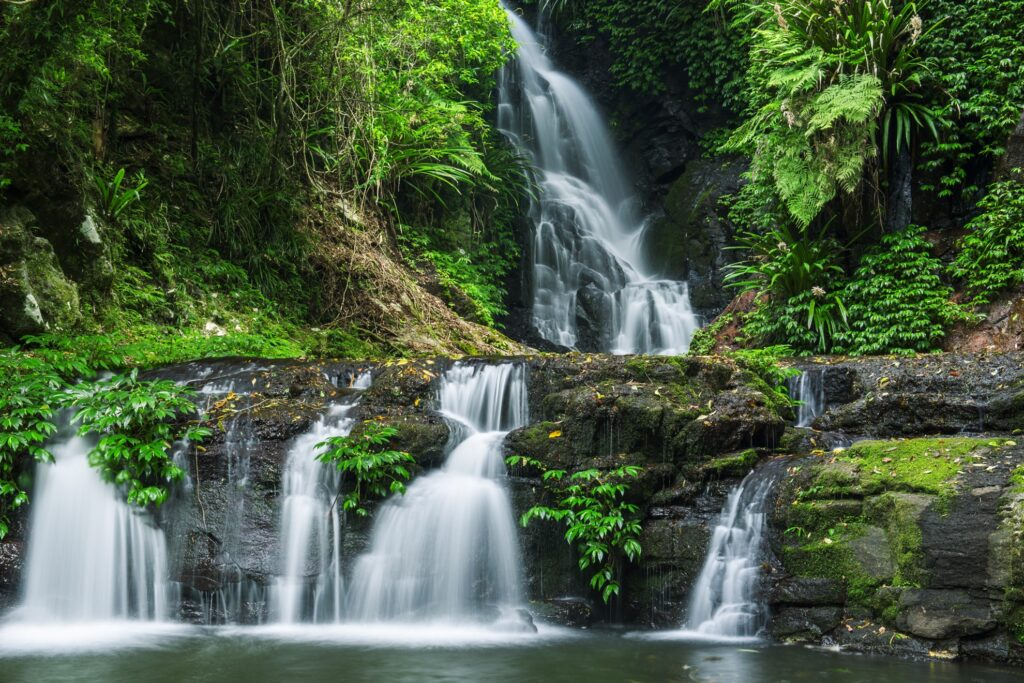 A waterfall in Lamington National Park.