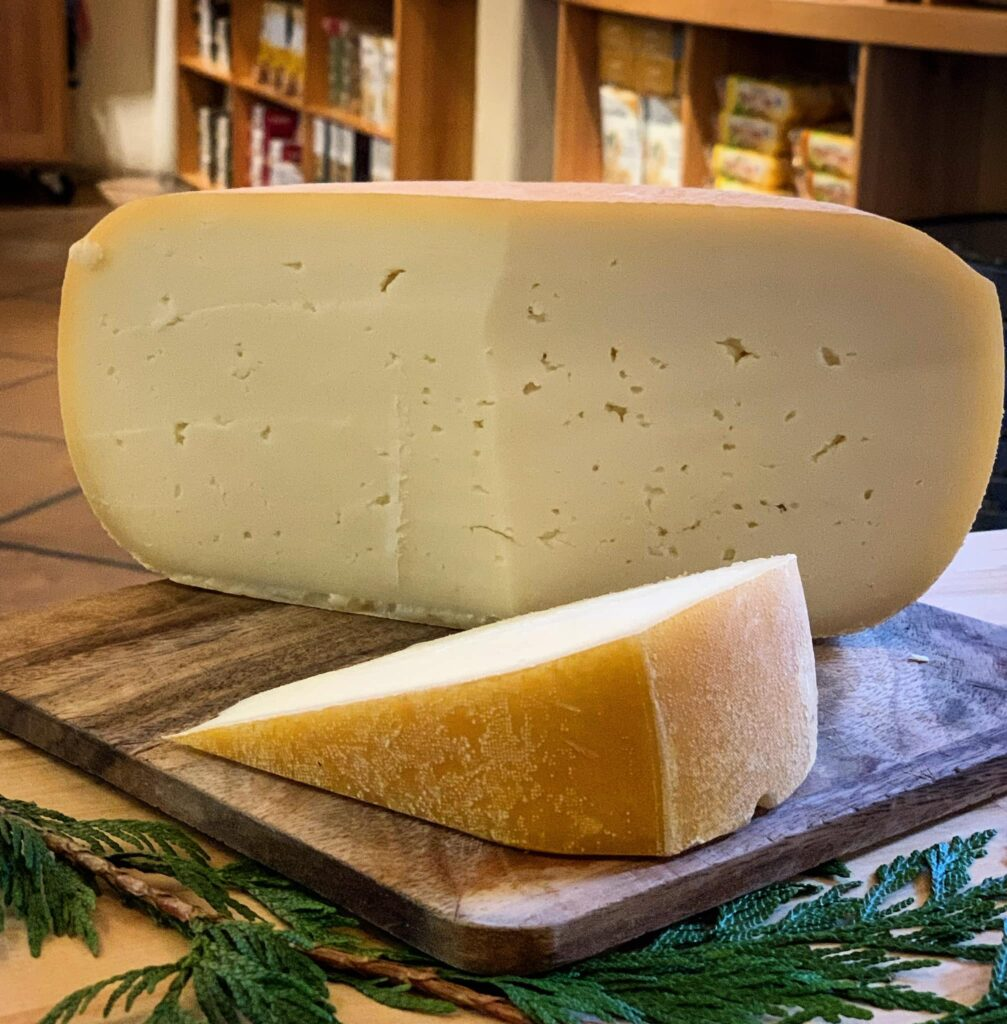 A wheel of cheese from Salt Spring Island Cheese Company.