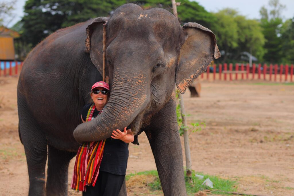A woman interacting with elephants at Elephantstay.