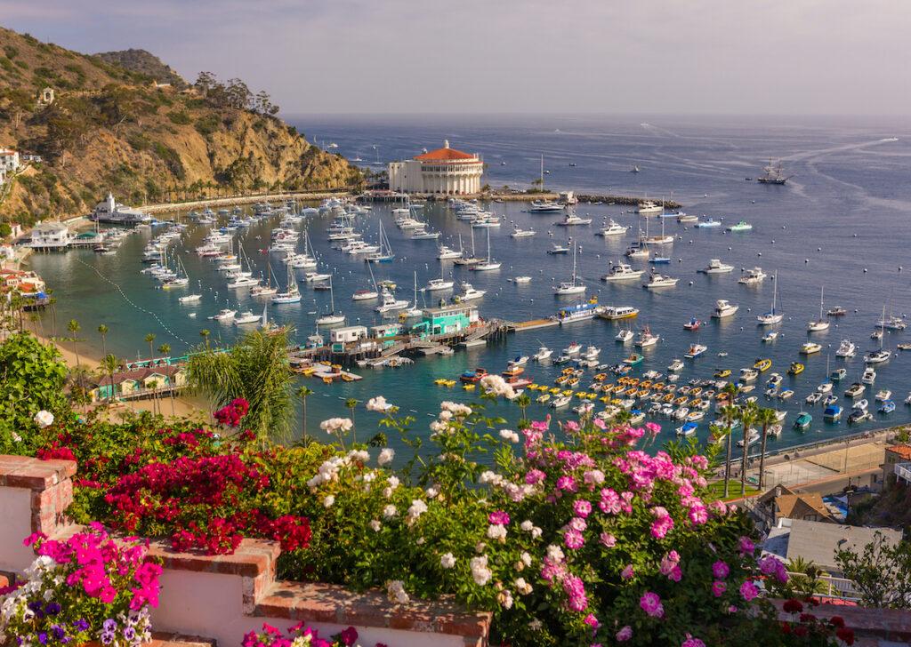 Aerial view of Catalina Island, California.