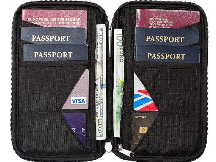 Agilisk travel wallet.