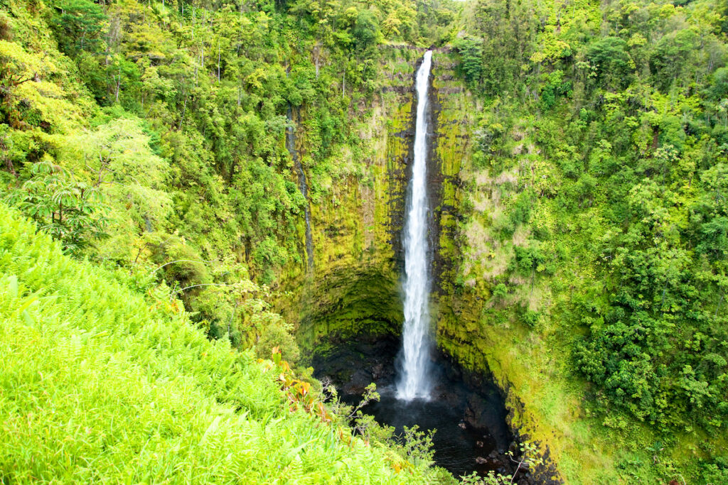 Akaka Falls in Hilo, Hawaii.