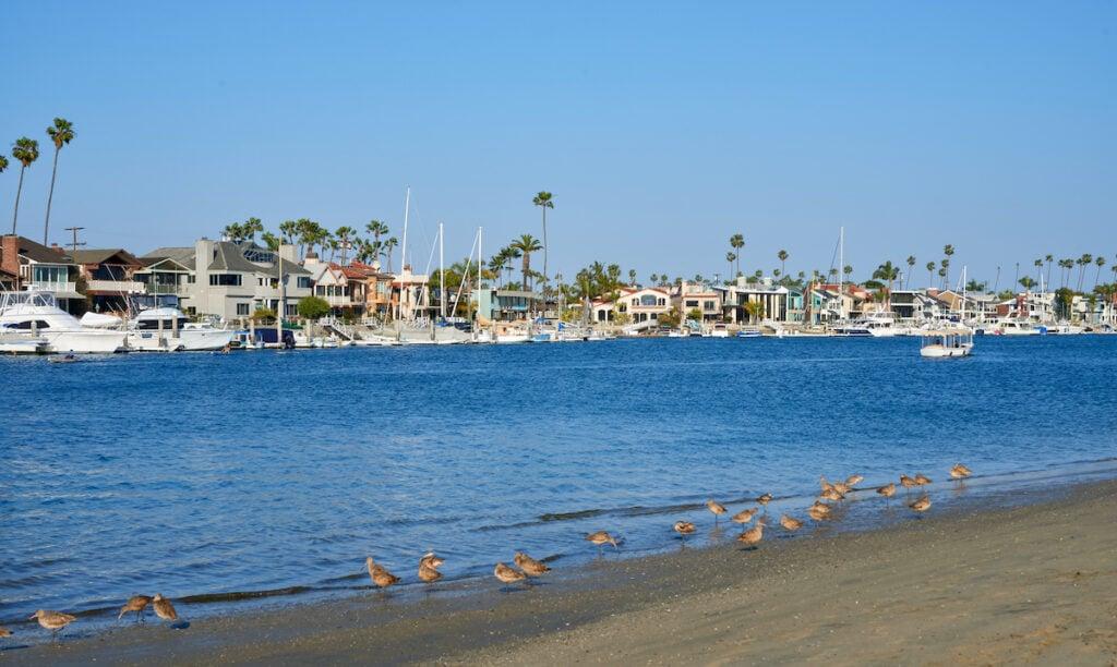 Alamitos Bay in California.