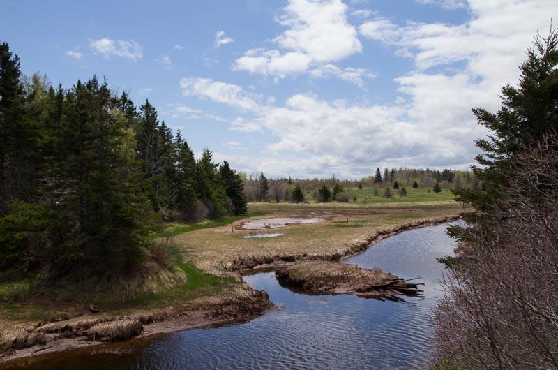 Amherst Shore Provincial Park in Nova Scotia.