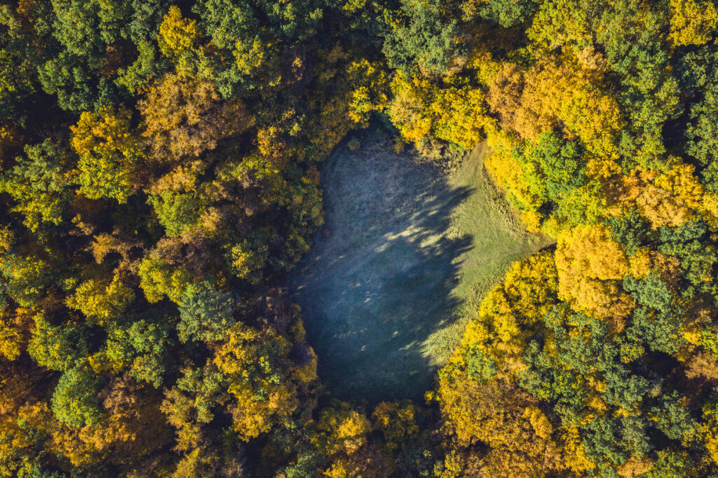 An aerial shot of the unexplained clearing in Hoia Baciu Forest in Romania