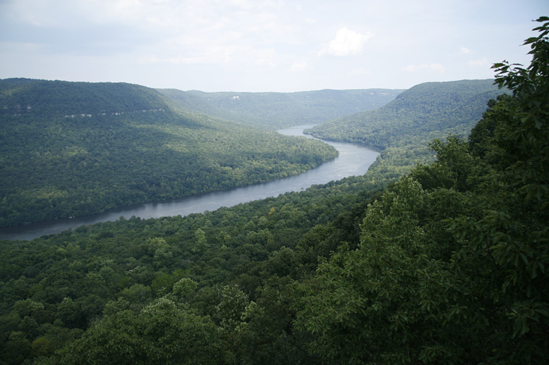 An aerial view of the densely forested Tennessee River Gorge
