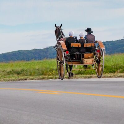 An Amish family riding in a horse-drawn buggy.