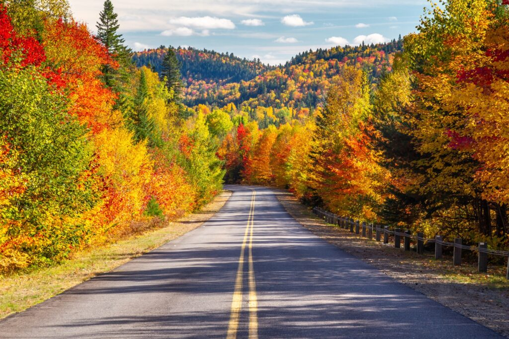 An East Coast road trip during the fall.