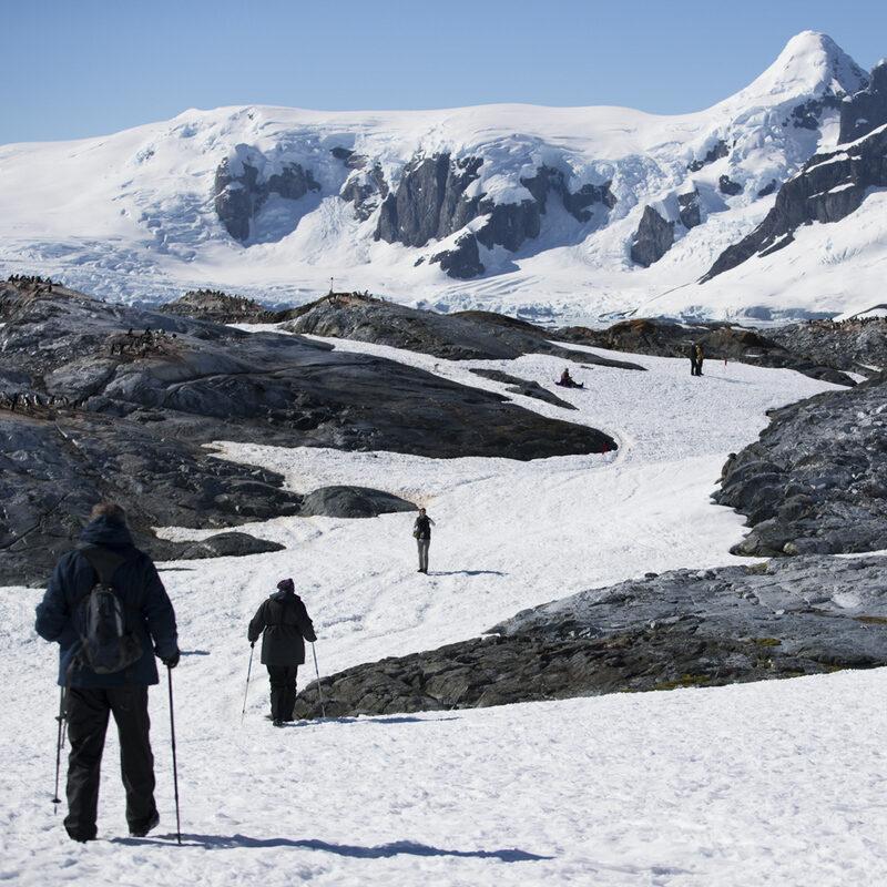 An excursion on a cruise to Antarctica.