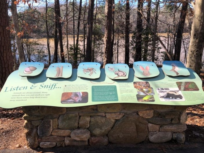 An informational sign along the Dragonfly Trail at Lake Norman State Park.