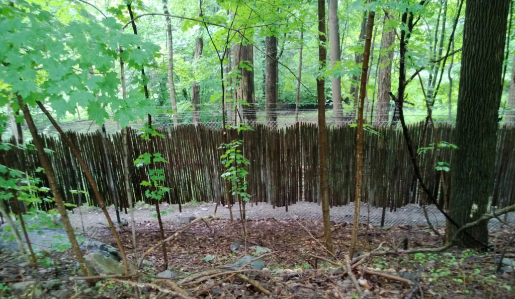 An old fence at the Jungle Habitat.