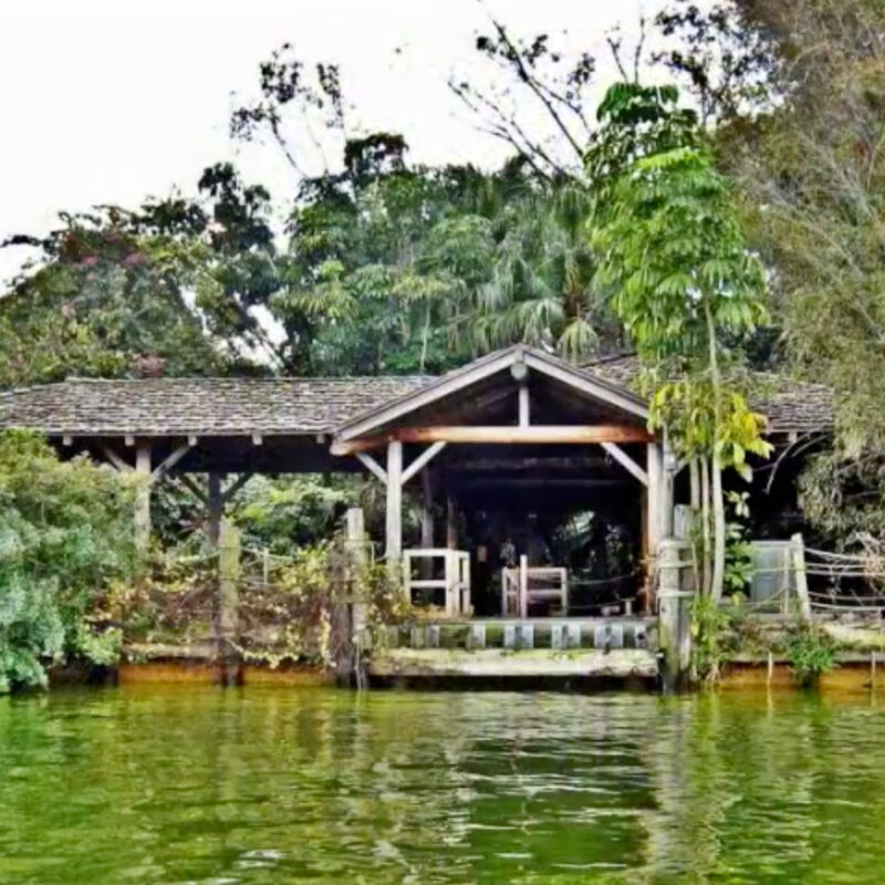 An old image of Disney's abandoned Discovery Island.