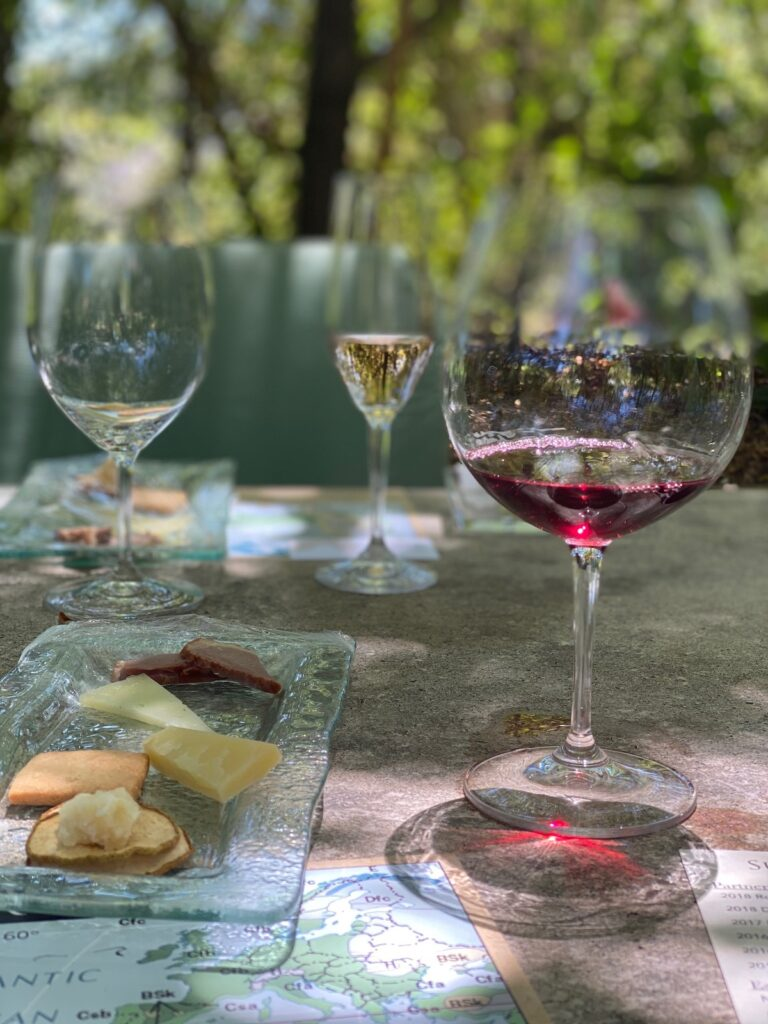 An outdoor wine tasting in Sonoma County.