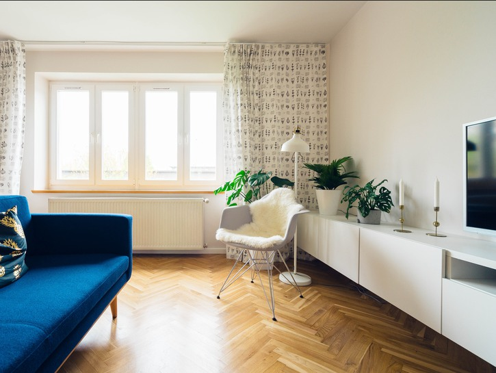 Apartment with hardwood floors, blue couch, windows, TV