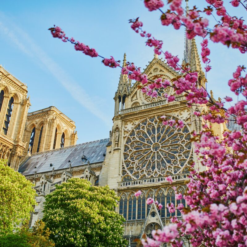 April at Notre-Dame Cathedral in Paris, France.