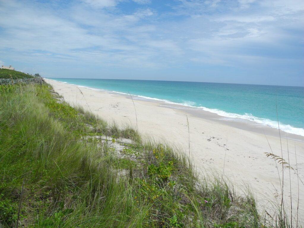 Archie Carr National Wildlife Refuge in Florida.